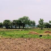 Ecovillage pic