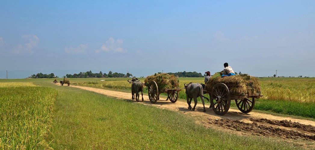 Report on Mercury Hot-spots in Bangladesh