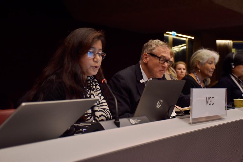 Intervention by ESDO executive director Siddika Sultana at Mercury COP2 at Geneva
